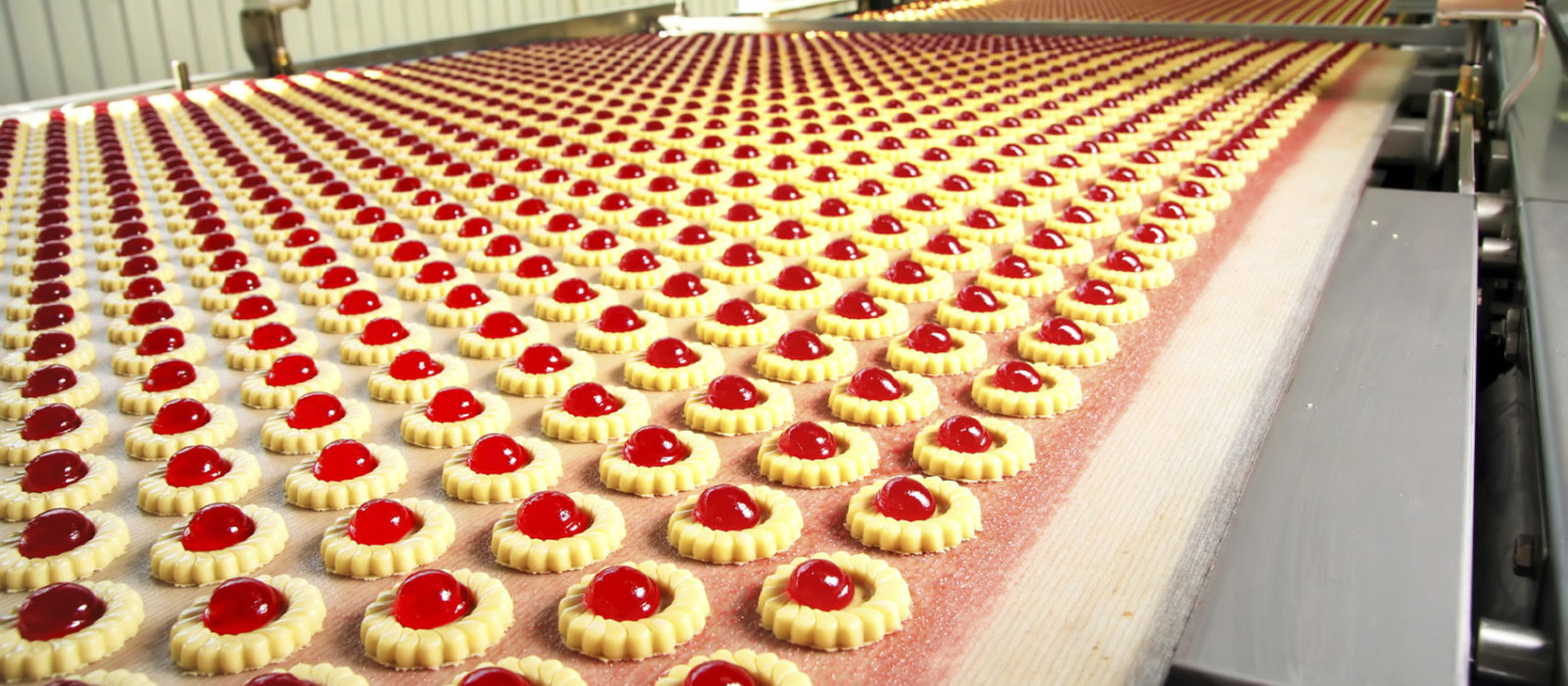 How to Select the Best Conveyor Belt For Cookie & Cracker Industries