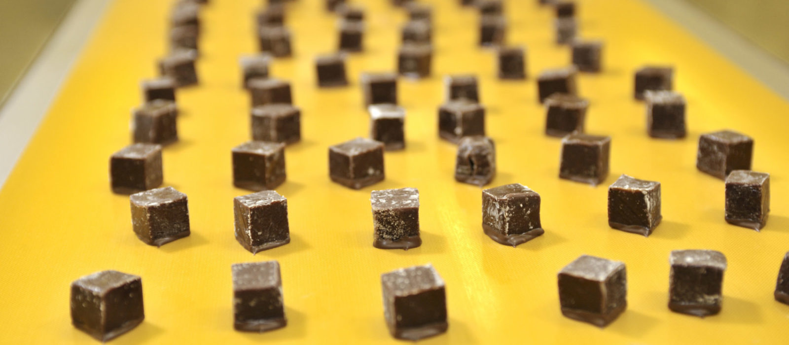 How to Select the Right Food Grade Conveyor Belt for Confections
