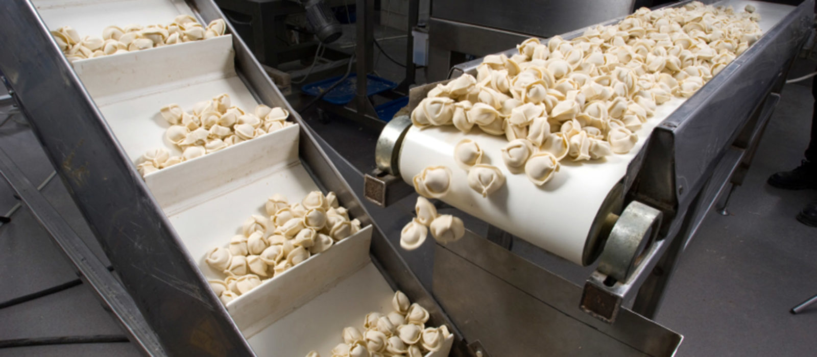 Are All White Food Grade Conveyor Belts the Same?