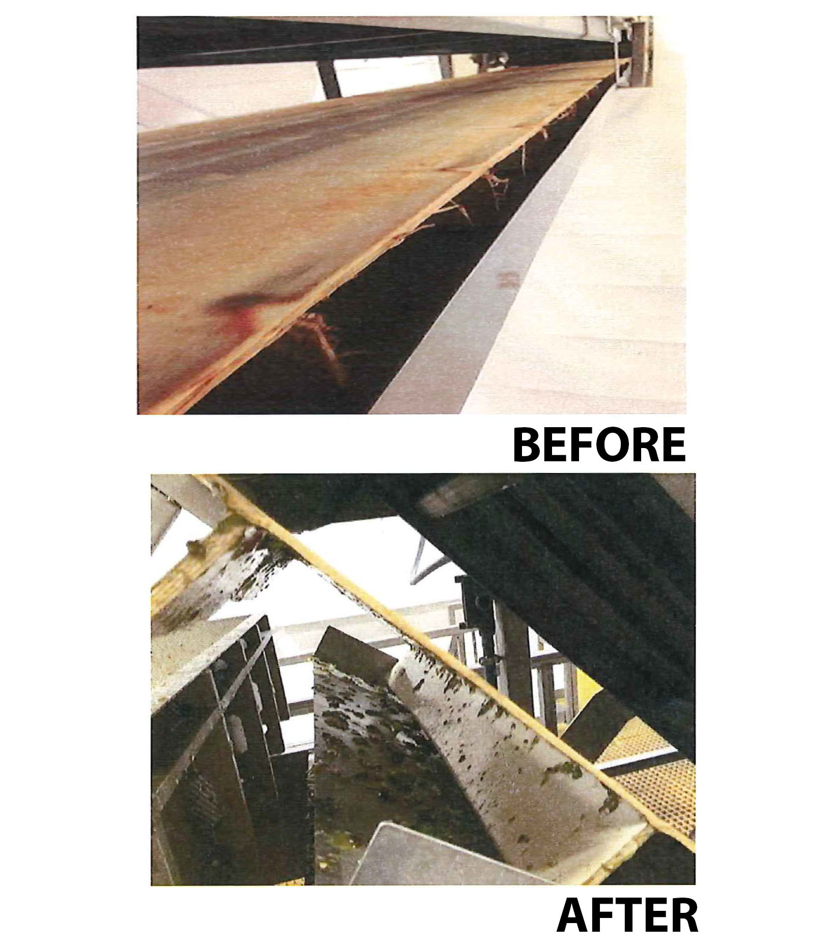conveyor belt project case study Keymas ltd - case studies - see how we have helped customers with material handling and turnkey conveyor systems.